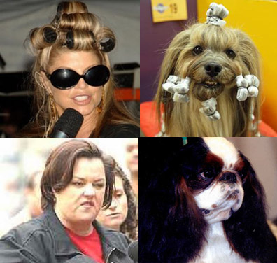 Celebrities_that_look_like_dogs